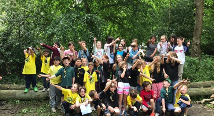 5th Southgate Scout Group